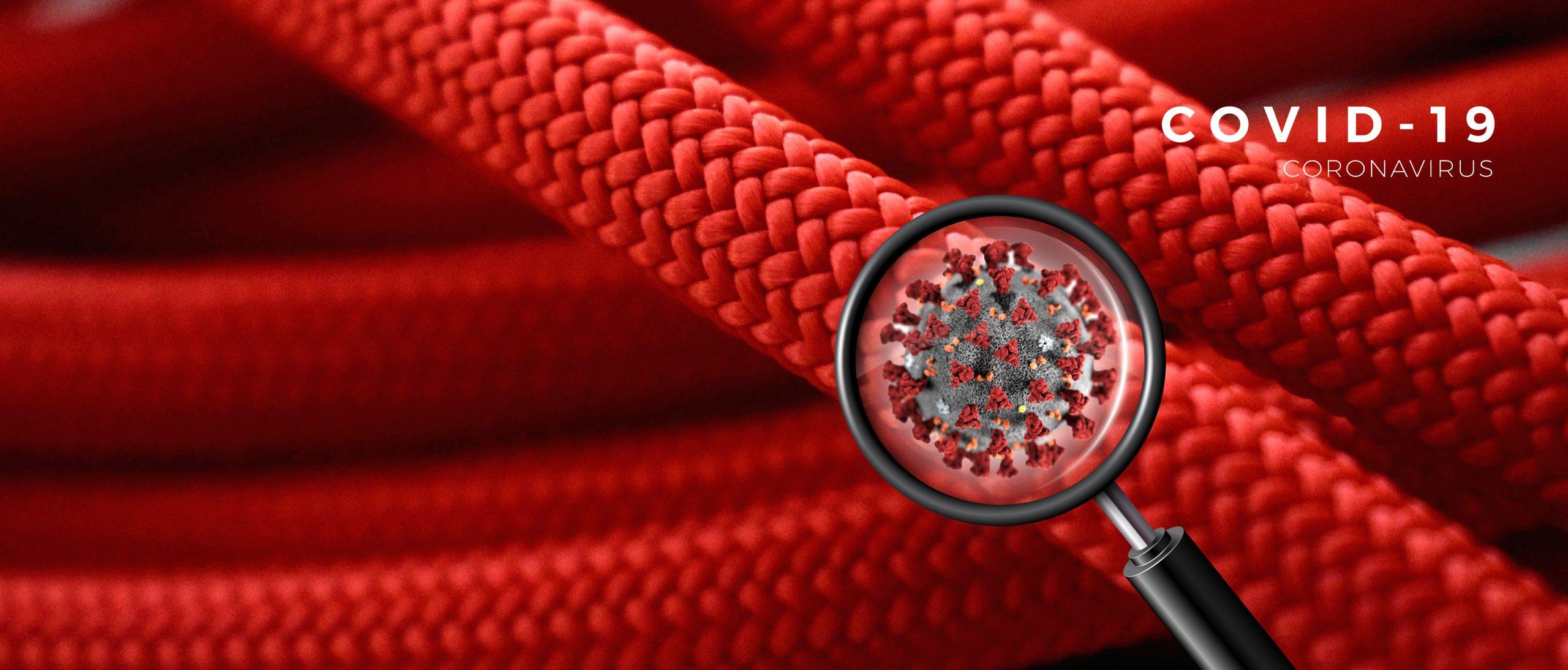 ¿Com hem de desinfectar les cordes?